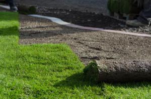 Rollrasen, Rasen Lieferung, Garten gestalten Polch
